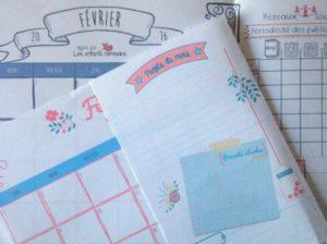 Février-Calendrier-planner-organiseur-mensuel